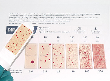 compare dipslide results