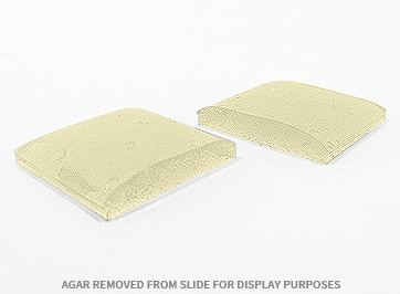 Thick reliable Agar